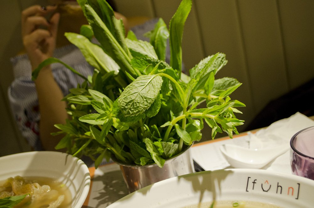 Fuhn restaurant's herb plant. humidwithachanceoffishballs.com